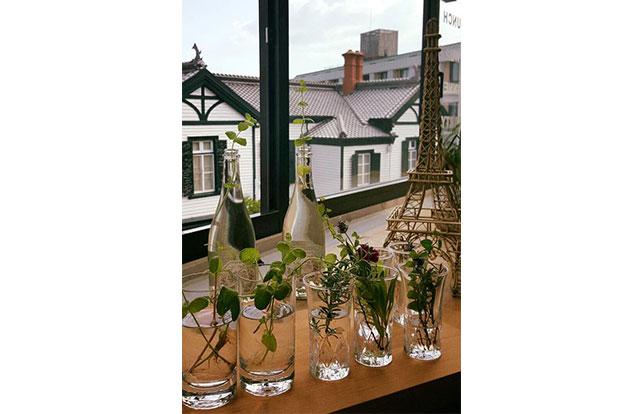 自家製夏野菜に、緑溢れるエントランス。自然を感じるレストランです♪