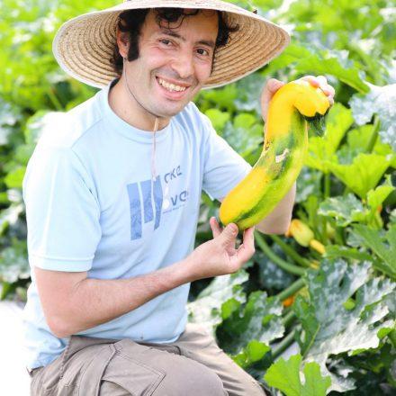 マネージャー自家製の神戸の野菜たちが続々入荷♪ ベジタリアンの団体様にもおすすめです。